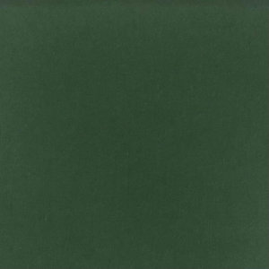 Solid Green Fabric